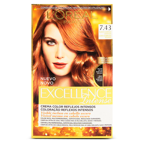 Garnier Excellence Intense Coloración